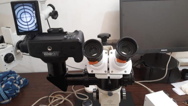 Comprar microscópio óptico usado